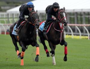 D.レーンが騎乗し、クルーガー(左)と本馬場で併せたリスグラシュー