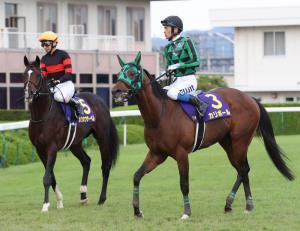 11着に終わった15番ホウオウサーベル(左)と18着に終わった3番・カリボール(カメラ・谷口 健二)