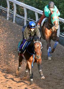 インディチャンプ(左)は鋭い加速で4馬身先着