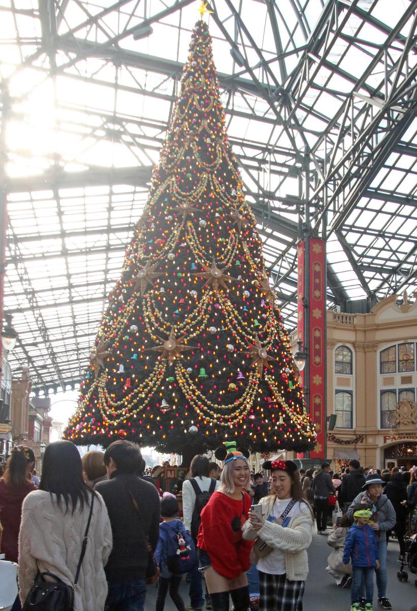 2年ぶりにディズニーランドに復活した15mの巨大クリスマスツリー(カメラ・佐々木 清勝)