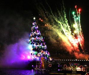 東京ディズニーシーの「カラー・オブ・クリスマス」