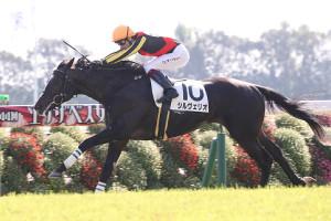 O.マーフィー騎乗のシルヴェリオが、後続に4馬身差をつけ圧勝(カメラ・高橋 由二)
