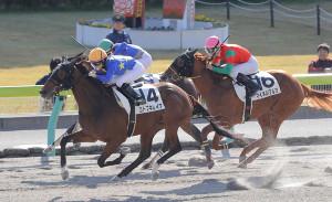 藤田菜七子騎乗のコトブキレイア(左)が勝利した(カメラ・池内 雅彦)