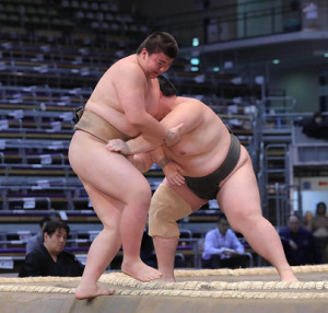 前相撲で二本柳(右)に敗れた夢道鵬