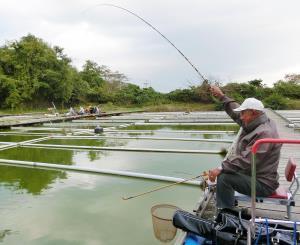 奈良市の河野さんは順調に竿を曲げていた