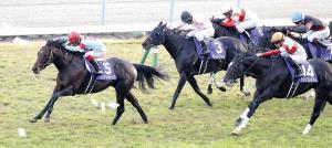 インディチャンプ(左)が直線で鋭く抜け出し、2着ダノンプレミアム(右手前)に1馬身半差の快勝