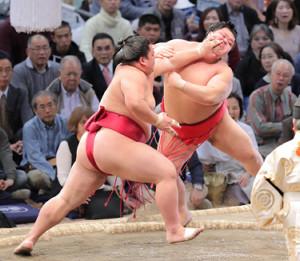 大栄翔(左)が突き出しで阿武咲を下す