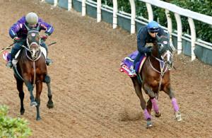 武豊騎乗のタイセイビジョン(右)は僚馬に先着