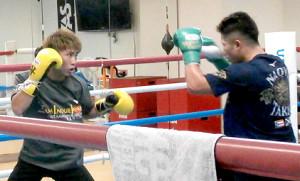 米国進出する2020年の最初の練習で、弟・拓真(右)と軽めのスパーリングを行った井上尚弥(横浜市の大橋ジムで)