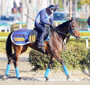 調教ゼッケンは18だが、馬名はアカノニジュウイチ。その末脚は一級品だ