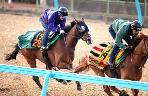 古馬相手に馬なりで併入したルナシオン(左)