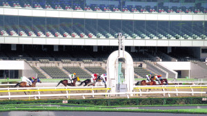 新型コロナウイルスの感染拡大で、無観客で実施された地方競馬の大井競馬