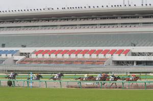 中山競馬場では新型コロナウイルス感染拡大防止のため無観客で開催された(カメラ・池内 雅彦)