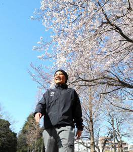 桜の花を眺めながら歩く大野忍さん(カメラ・関口 俊明)