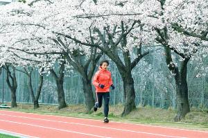 満開の桜が並ぶ母校のグラウンドで走り込む小池(カメラ・長井 毅)