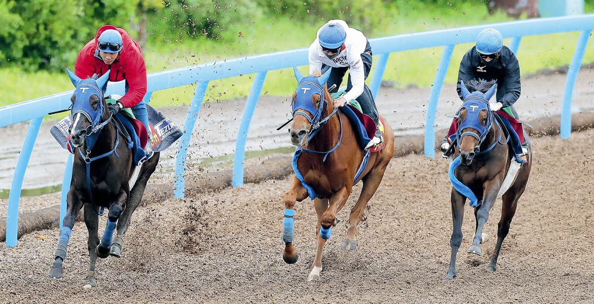 3頭で白熱の併せ馬を行った手塚厩舎の(左から)マルターズディオサ、ウインマリリン、インターミッション