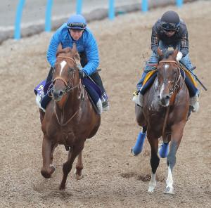 レーン騎手が騎乗し美浦Wコースで追い切ったサリオス(左)