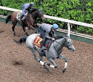 活気十分に1馬身半先着したミヤマザクラ(手前)