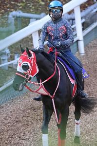 福永とのコンビで無敗のダービー馬を目指すコントレイル