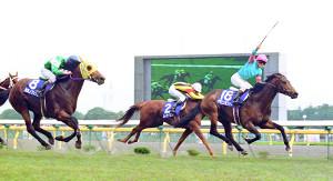 92年安田記念。派手なガッツポーズの田中勝を背にゴールへ飛び込むヤマニンゼファー(18)。左は天皇賞・春から転戦して2着のカミノクレッセ(8)