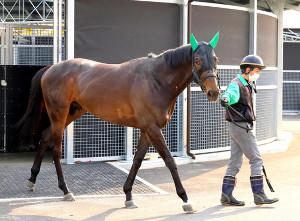 逃走Vを狙う3歳馬のキメラヴェリテ