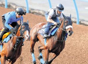 ルメールが好感触を得たアーモンドアイ(右)の併せ馬