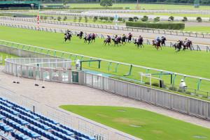 8月15日から制限付きの入場を再開する新潟競馬場