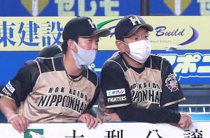 戦況を見る栗山英樹監督(右)と鶴岡慎也コーチ