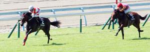 ヨカヨカ(左)は2着テイエムサツマドン(右)に3馬身半差をつけて楽勝