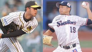 阪神・高橋遥人(左)とヤクルト・石川雅規
