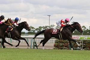 ダノンスマッシュ(右)が直線抜け出し、重賞6勝目をマーク(カメラ・高橋 由二)