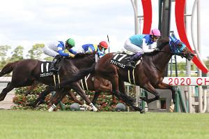 武豊騎乗のアドマイヤビルゴ(右)がゴール前で力強く抜け出し、快勝(カメラ・高橋 由二)