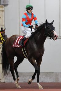 3歳馬のビアンフェは5着(カメラ・高橋 由二)