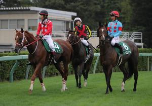 レースを終え、引き揚げる(左から)ストーミーシー、ルフトシュトローム、スイープセレリタス(カメラ・成海 晃)