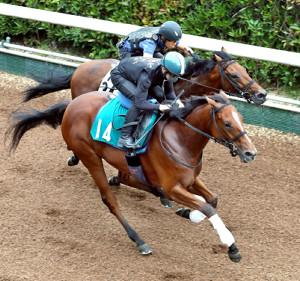 ダノンシュネラ(手前)はオープン古馬に馬なりで先着