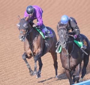 ルメール騎手を背に美浦Wコースで追い切ったグランアレグリア(左)