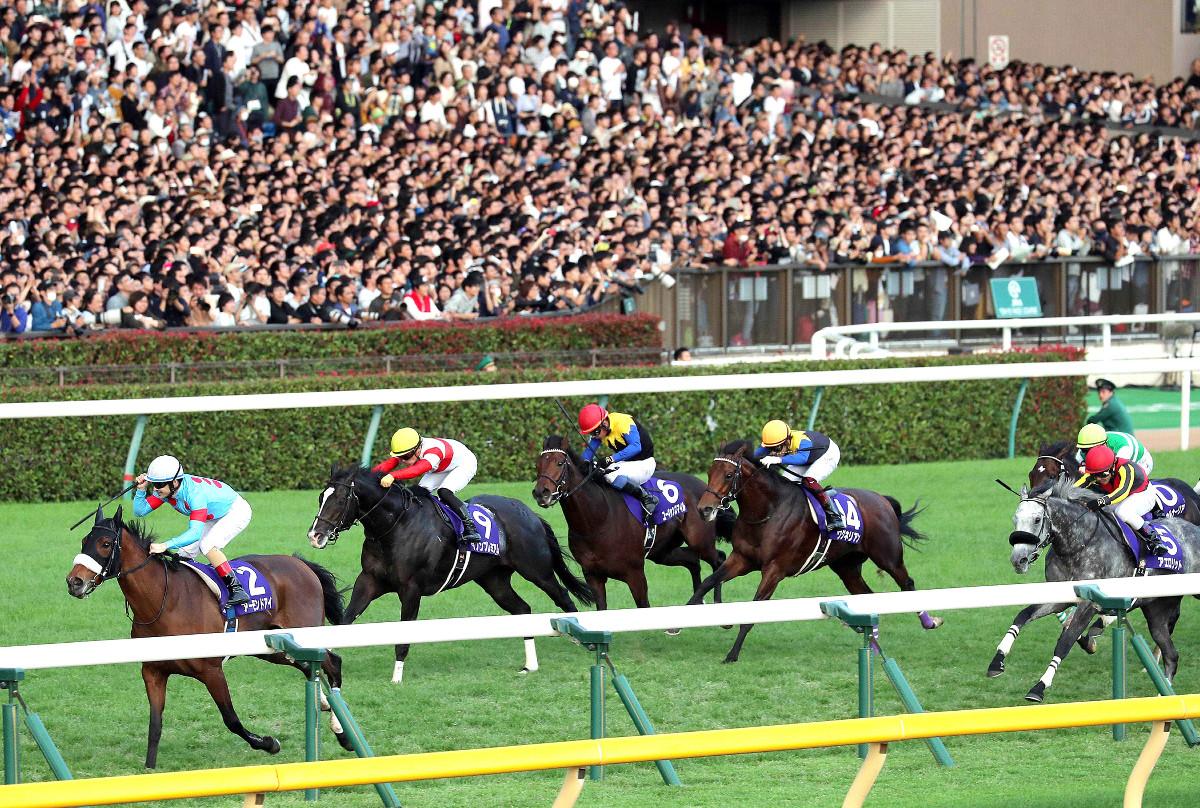 東京競馬場で行われた昨年の天皇賞・秋。アーモンドアイ(左)が観客の声援を浴びて先頭でゴールした