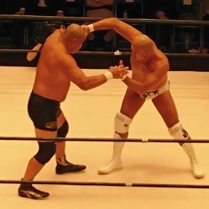 秋山準(右)と初対戦した藤田和之
