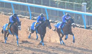 3頭併せの3番手から追走したアーモンドアイ(クリストフ・ルメール騎手)(右) (カメラ・安藤 篤志)