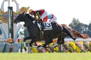 新馬戦に勝利したシャフリヤール(カメラ・高橋 由二)