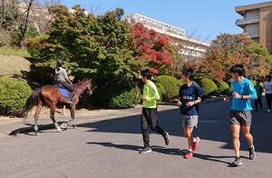 前日練習中に馬と遭遇し、びっくりの青学大メンバー(左から神林、吉田、岩見)