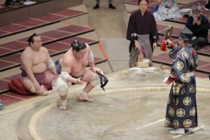 照ノ富士は志摩ノ海を寄り切りで下し勝ち名乗りを受ける