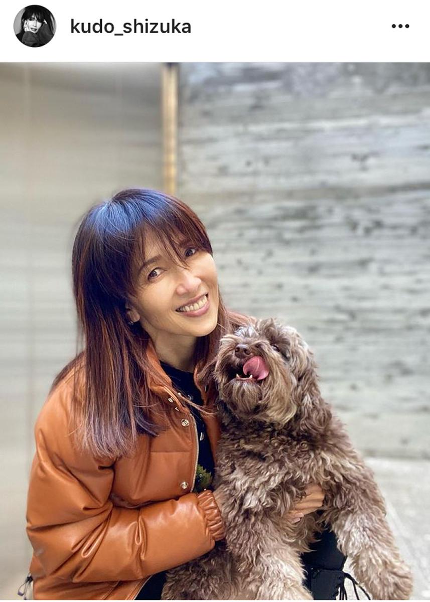 愛犬 キムタク