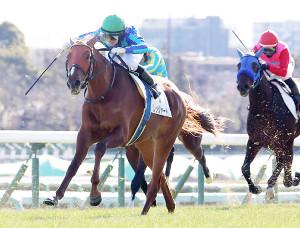 3歳新馬を制したレッジャードロ(左)(カメラ・相川 和寛)