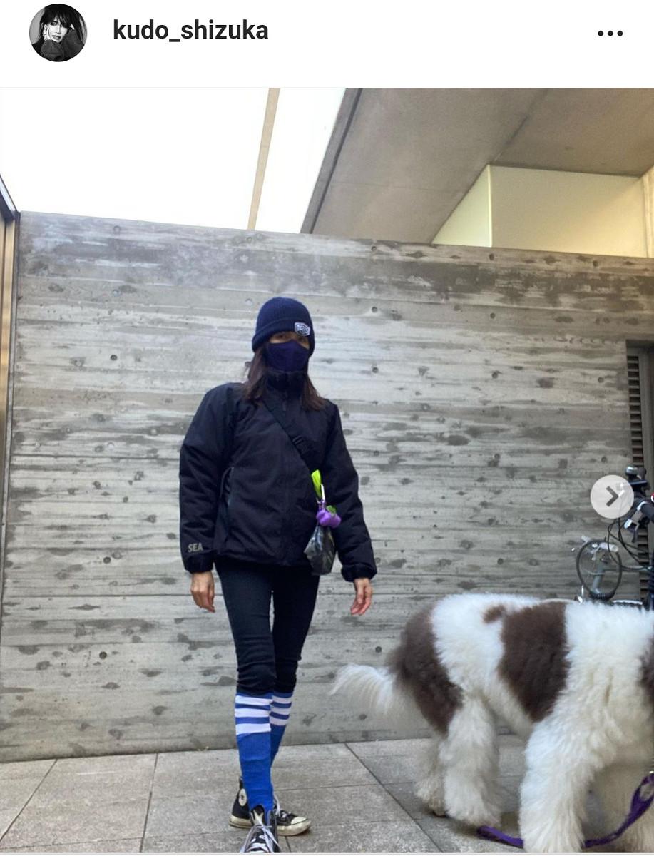 犬 工藤静香