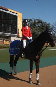 フェブラリーSで誘導馬を引退するサクセスブロッケン