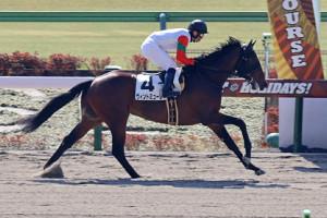 北村宏司騎乗のヴィントミューレが5馬身差の圧勝