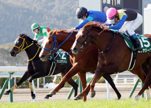 石川騎手騎乗のテリトーリアル(中)がボッケリーニ(右)に鼻差競り勝って重賞V