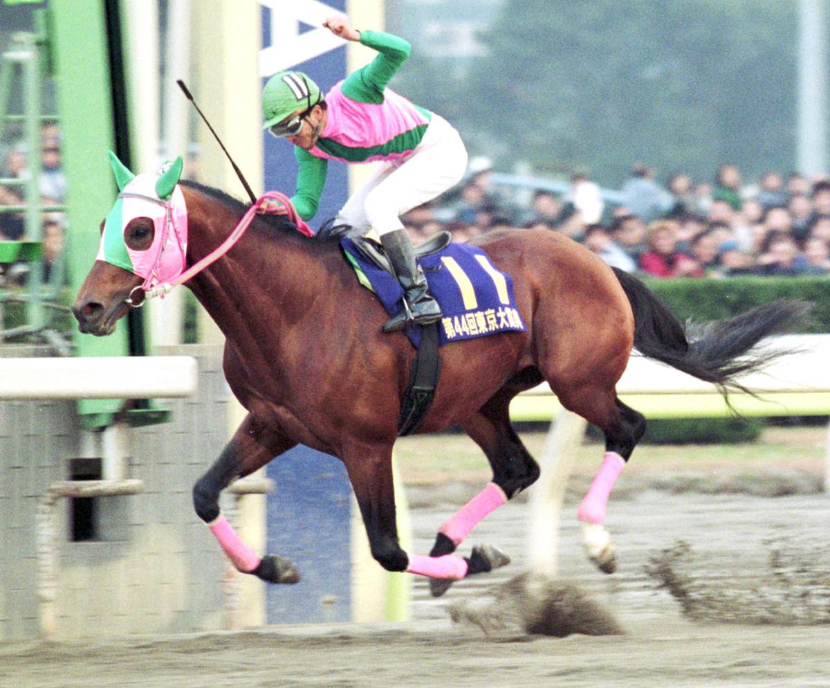 交流G1で4勝の地方馬アブクマポーロ死す 29歳 : スポーツ報知