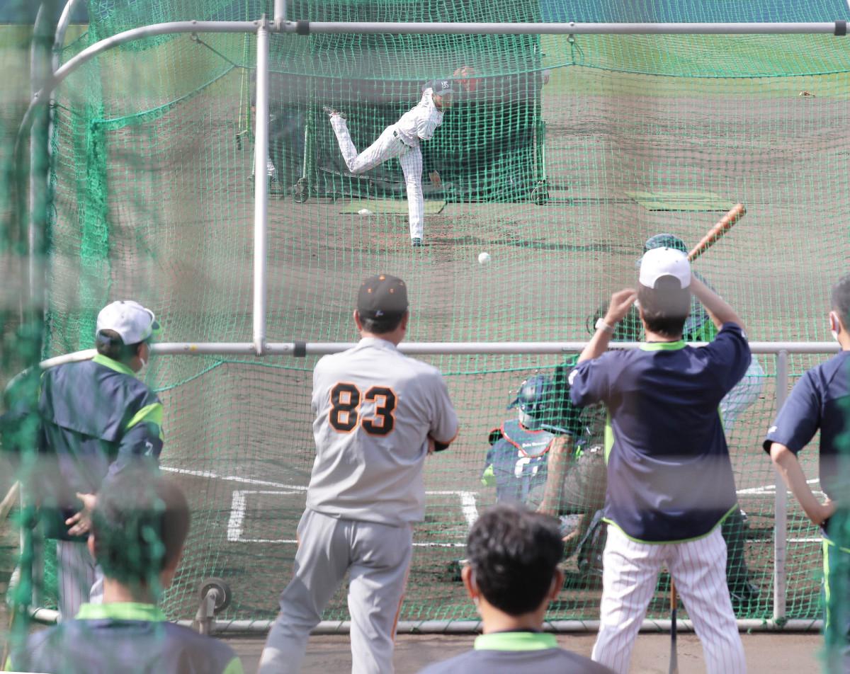 打撃投手を務めた奥川恭伸の投球を高津臣吾監督と並んで見つめる原辰徳監督